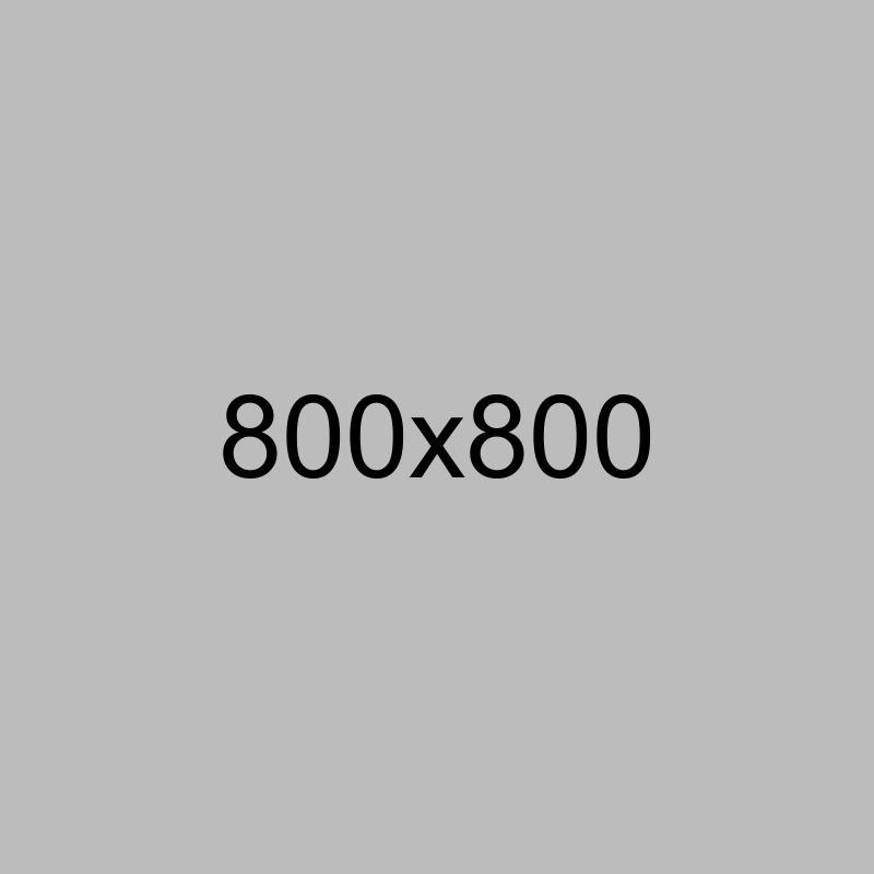 Camera X1000